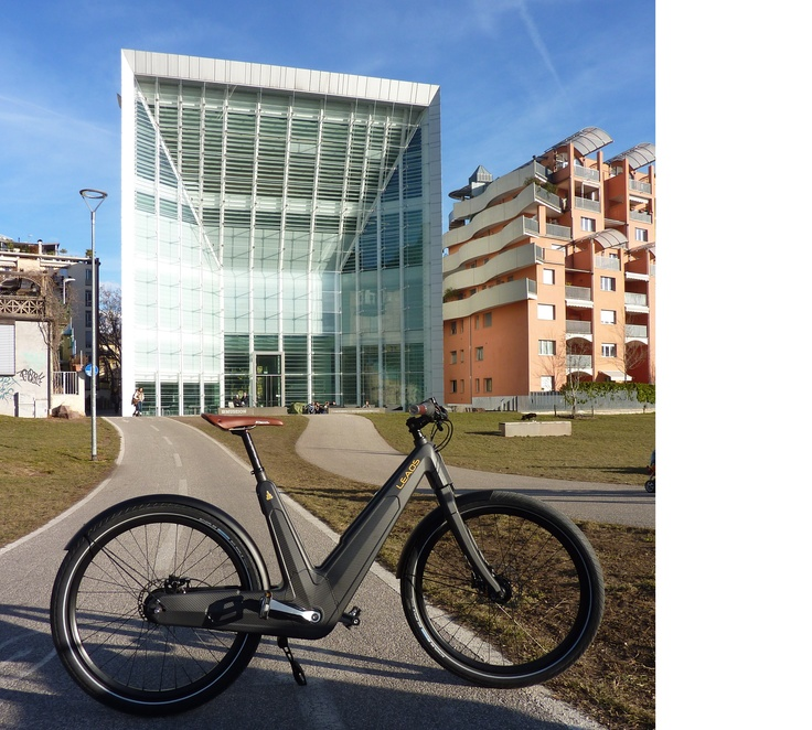 Leaos Carbon urban E Bike