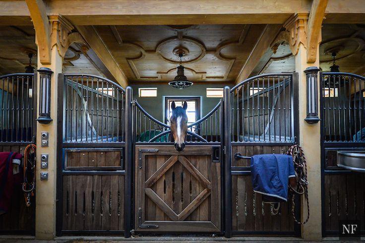 Inca stables, Switzerland.
