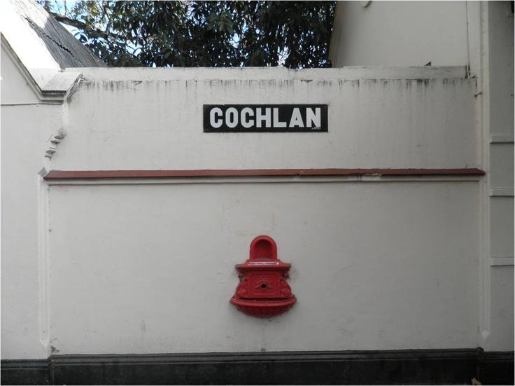El escupidero rojo top de la Estación Coghlan