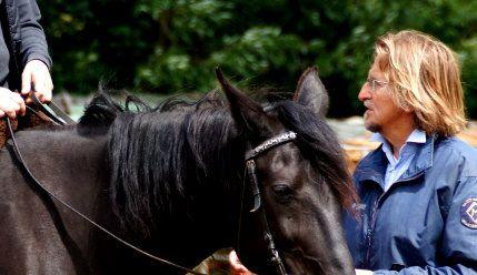 Mein Reitkonzept basiert auf dem Wissen alter Meister. Ausgehend von diesem großen Wissensfundus und unterstützt von vielen, vielen guten Pferdeseelen, die mir den richtigen Weg zeigten, entwickelte ich die Grammatik des Reitens™. http://www.trust-your-horse.com/tyh_work_power.html (Bild: Irene Schmid)