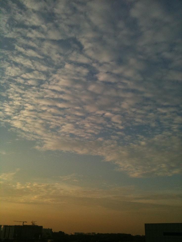 Cottons..... #sky #cloud #sun #sunset
