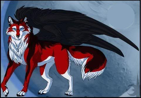 winged black red and white wolf anime anime