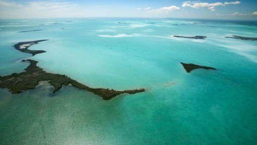 L'acidification des océans a augmenté de 26% en 200 ans - 7SUR7.be [Belgium News]