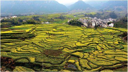 Hui Hang Caravan Trail China | Day Jixi Ancient Village ...