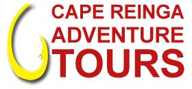 Want to Go Camping? | Cape Reinga Adventures
