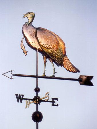 weather vane | Wild Turkey Weather Vane Standing (Meleagris gallopavo)