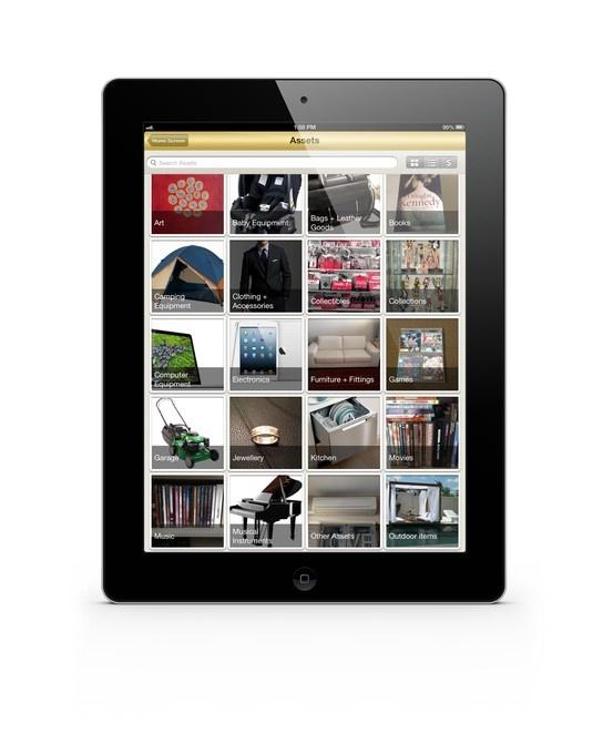 Sneak peek - asset gallery view on the native My eVault app for iPad mini