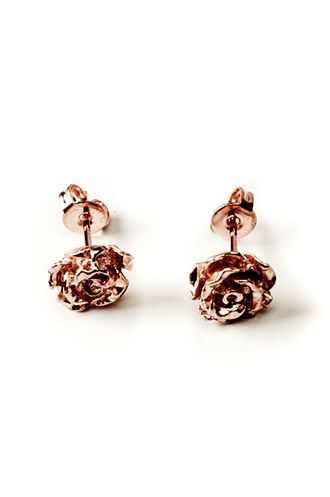 Rose Earrings. I've gotta get my second holes pierced, I miss wearing cute earrings. I just can't let go of my gauges!