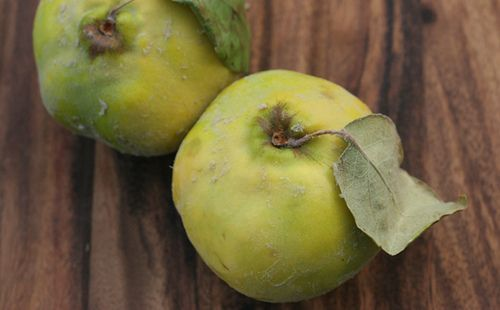 Quince may be the ultimate overlooked fall fruit. What is this strange fall fruit, and what can you do with it? Check out these recipe ideas.