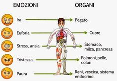 Di Riccardo Dapretto P.T.-riccardodaprettopersonaltrainer.blogspot.it Le malattie ed i sintomi altro non sono che messaggi inviati dal corpo ad una mente