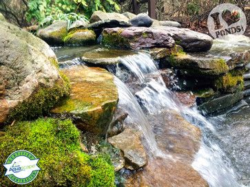 Green things are sprouting, birds are signing, water is flowing... Spring is here! Dream up your backyard landscape ideas and be sure to include a beautiful backyard waterfalls
