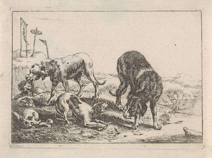 Theodorus van Kessel | Honden bij knoken, Theodorus van Kessel, Johannes van den Hecke, G. Quineau, 1654 | In een landschap staan vier honden bij enkele knoken en een schedel. Een van de honden verdedigd zijn bot tegen een andere hond, die zijn neus geïnteresseerd in de richting van het been heeft gestoken. Op de achtergrond zijn twee galgen afgebeeld. Deze prent maakt deel uit van een tiendelige serie over diverse dieren.