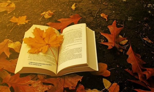 El otoño se acerca... una época perfecta para la lectura.