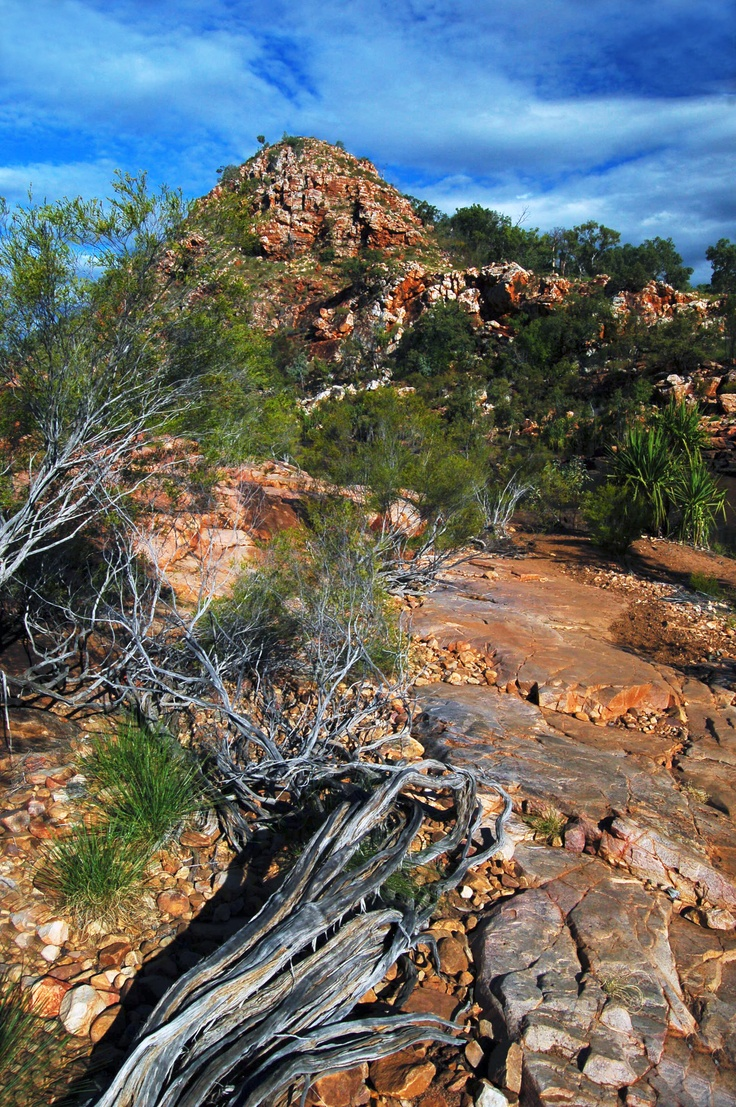Bell Gorge    http://www.tracyryanphotography.com: Belle Gorge, Westerns Australia