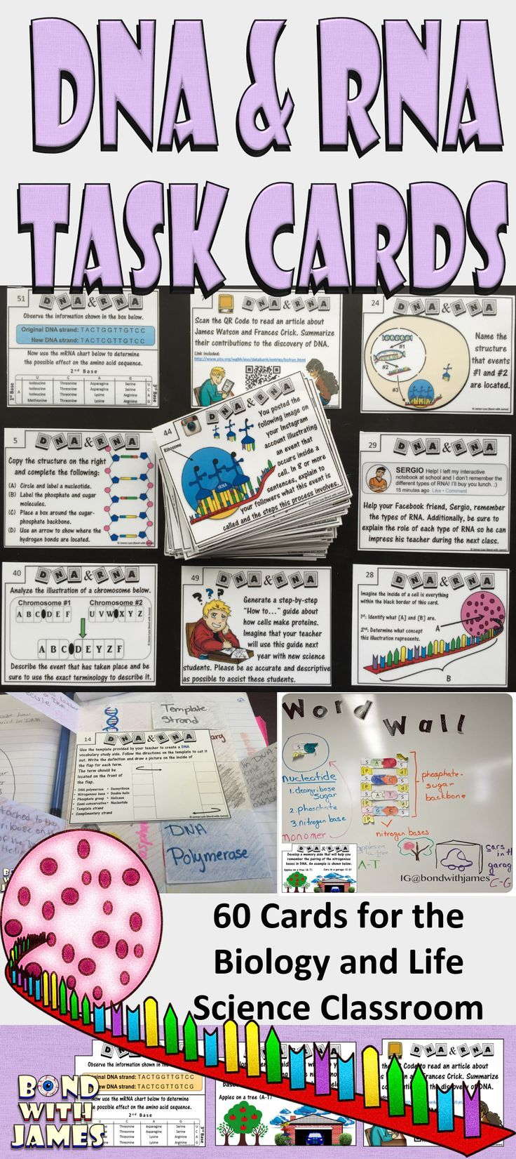 60 Task Cards for the biology/life science classroom. • DNA structure • DNA replication • Types of RNA • Transcription • Translation • Point Mutations • Chromosomal Mutations • Eukaryotic cell structure • Prokaryotic cell structure • Viral structure