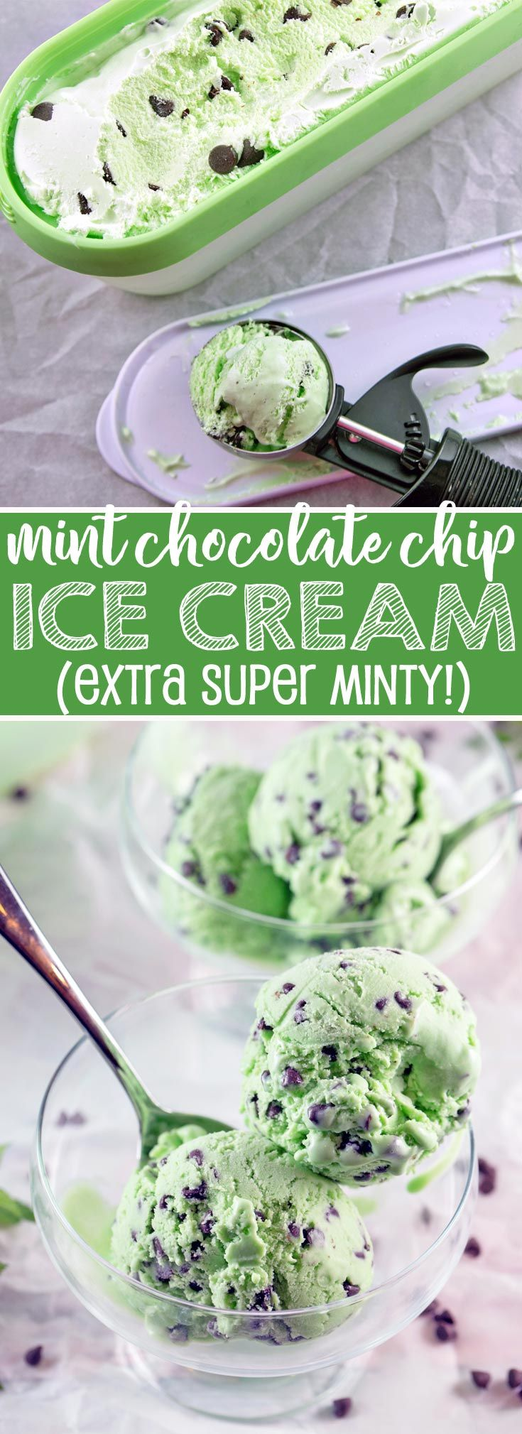 Mint Chocolate Chip Ice Cream: this is the mintiest chocolate chip ice cream out there! A perfectly smooth and creamy base infused with extra mint flavor and just the right amount of chocolate chips. {Bunsen Burner Bakery} via @bnsnbrnrbakery