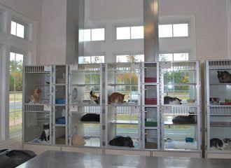 Gloucester-Mathews Humane Society cat condos