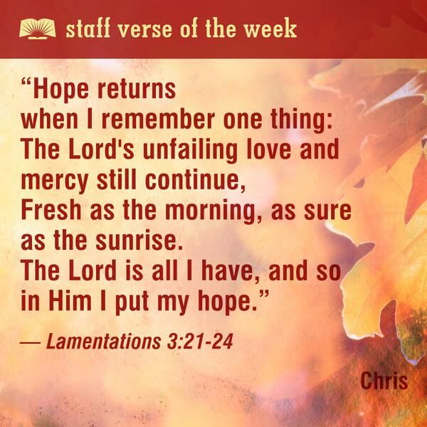 Bible Quotes Never Give Up: 23 Best Staff Verse Of The Week Images On Pinterest