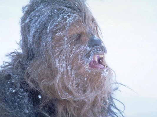 Chewie On Empire Strikes Back