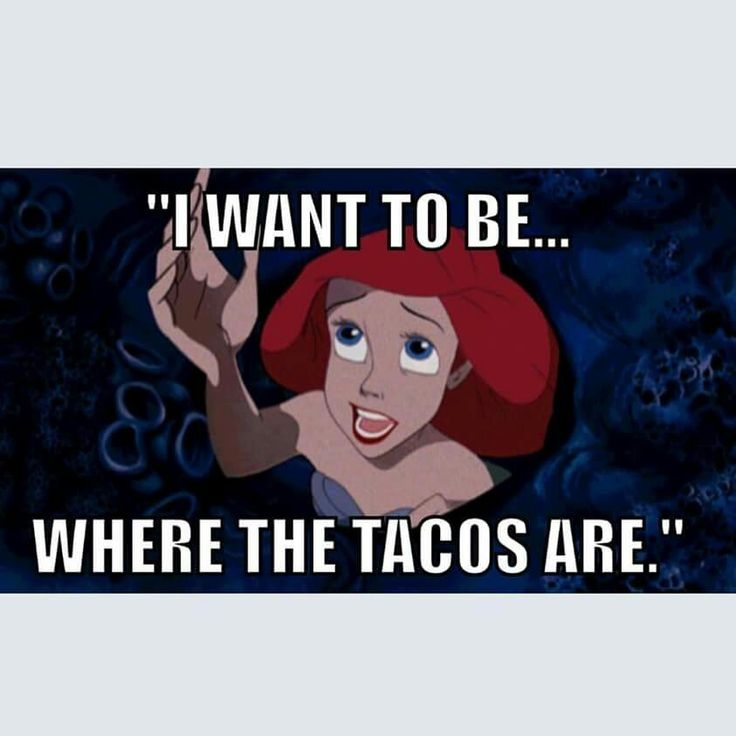 A Little Taco Humor On This Awesome Tuesday: Deer Valley Office Plaza 20430  N. Phoenix Liv Northgate 455 S.