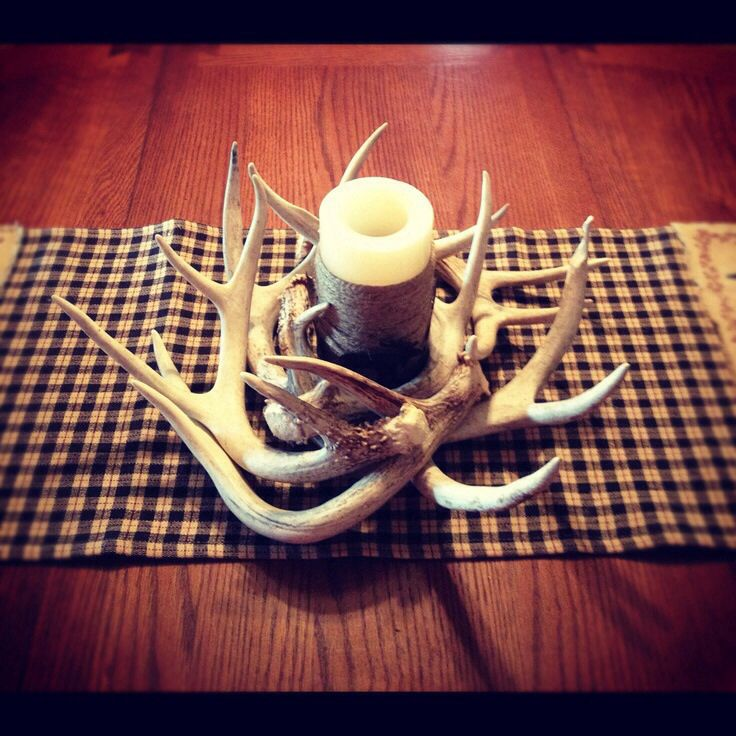 Hunting decor home pinterest for Antler decorations for home