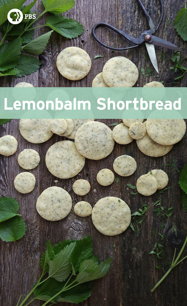 Serve lemon balm shortbread with some fresh tea and you've got yourself a decadent little treat for a summertime afternoon.