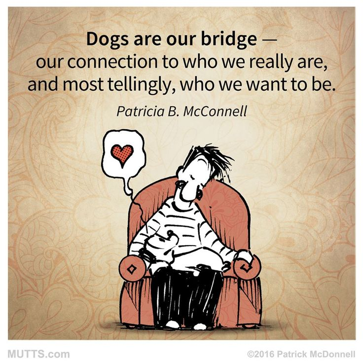 Dogs are our bridge... #MUTTScomics #MUTTSManifesto