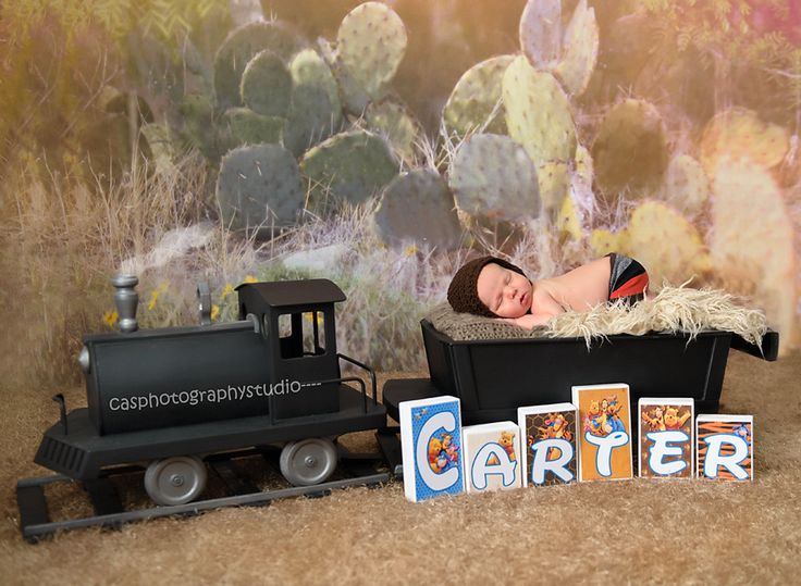 This is a train  that I had the pleasure of displaying for local newborn prop vendor he is selling it