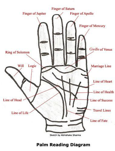 Palm Reading Diagram and basic definitions. How fun!