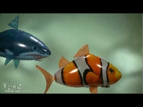 inflatable remote control fish.  nice.