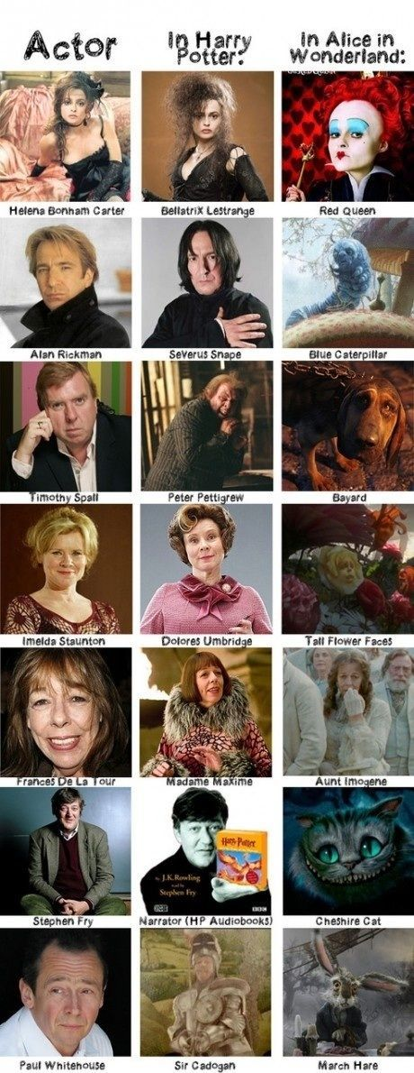 Harry Potter & Alice in Wonderland – funny pictures – funny photos – funny image…