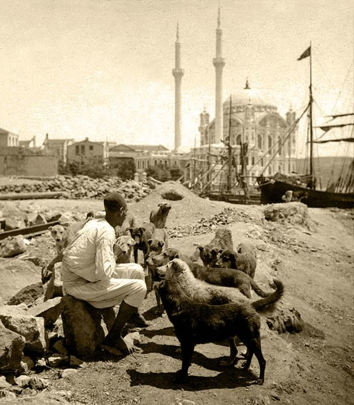 ORTAKOY MOSQUE : was built by (Armenian Architect) Nigogos BALYAN. in Baroque-style for Sultan Abdulmecit, between 1854-1855, in Istanbul. Nigogos new desing was tried in This Mosque and Dolmabahce Mosque. Sarah Allan View appears about 1910s.