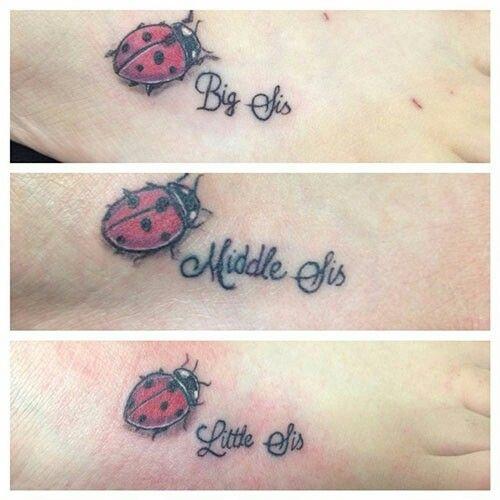 More ladybug