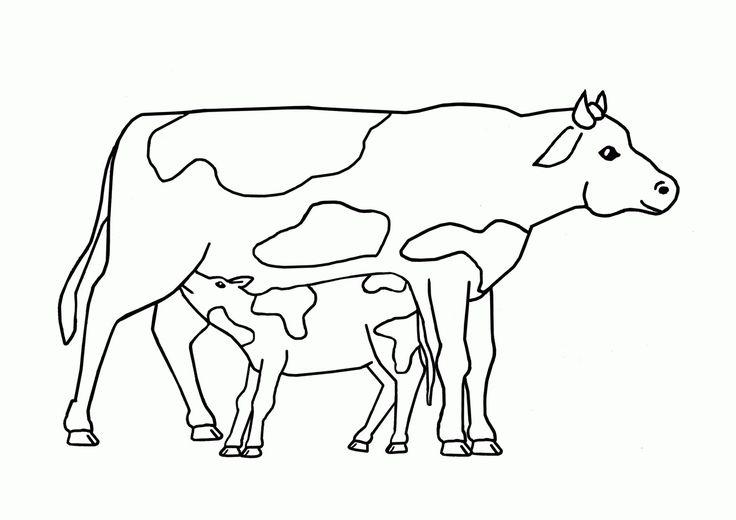 einzigartig kuh malen vorlage färbung malvorlagen