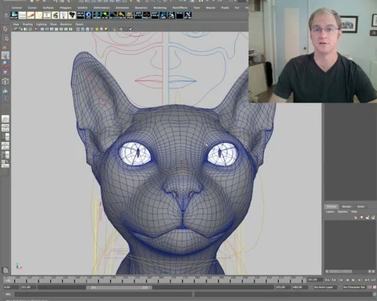 CGI,Computer-generated Imagery,CGI Tutuorial,Animation, CGI Tips and Ticks,Tips and Ticks, Live Action,Visual Effects,Tutorial,Tutorials,Animated,Tippett Studio,Animation Tutorial,Character Animation, 3D Computer Graphics, 3d Tutorial, Cat Animation, Animating Animals, Animating Believable Animal Characters, 3d animation, 3d, vfx