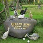 Jalan-jalan di Ubud Bali belum lengkap rasanya jika tidak mencoba Bali kuliner yang satu ini. Ubud merupakan salah satu tempat terbaik untuk mencari tempat makan di Bali. Semenjak tahun 1990 kuliner di Desa Ubud sudah terkenal dengan hidangan bebek goreng yang dapat kita nikmati di restoran Bebek Bengil Ubud.