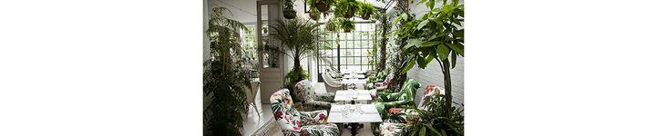 Paris, Londres, New York... Tour d'horizon des plus beaux endroits où siroter un cocktail, grignoter un morceau et flâner au beau milieu d'une jungle urbaine. Ambiance tropicool garantie.