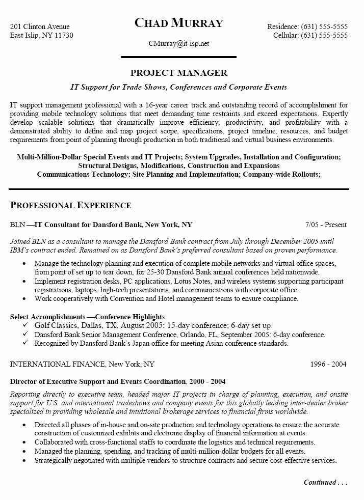 Information Technology Manager Resume Examples