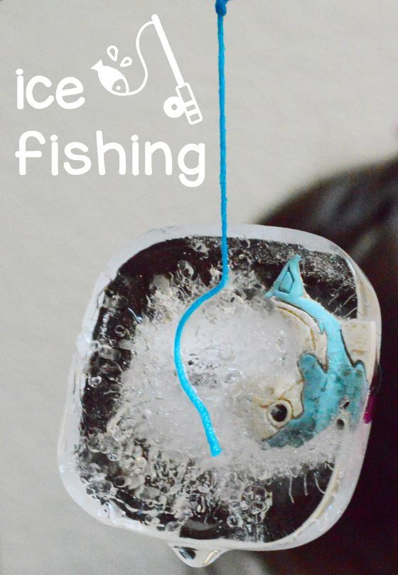 557 best science for kids images on pinterest science for Fishing science fair projects