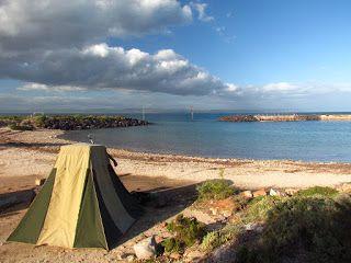 25 Dog-Friendly Campsites in Australia | Australian Dog Lover