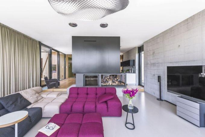 Stavbu charakterizuje spojení betonu a cedrového dřeva, které se objevuje uvnitř i vně stavby. Přestože jsou stěny společenského prostoru obnažené - jsou z pohledového betonu, ve spojení s ostatními použitými materiály působí celek hřejivě. Sedací souprava (B B Italia), kterou doplňují jen malé přídavné stolky, je pohodlnou základnou pro sledování TV či poslech kvalitního audio příslušenství Bang Olufsen