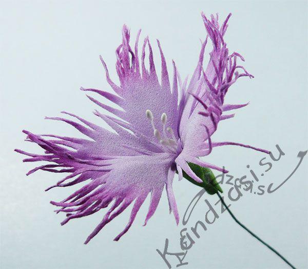 Мастер класс изготовления гвоздики пышной (Dianthus Superbus) из фоамирана, поэтапные фото