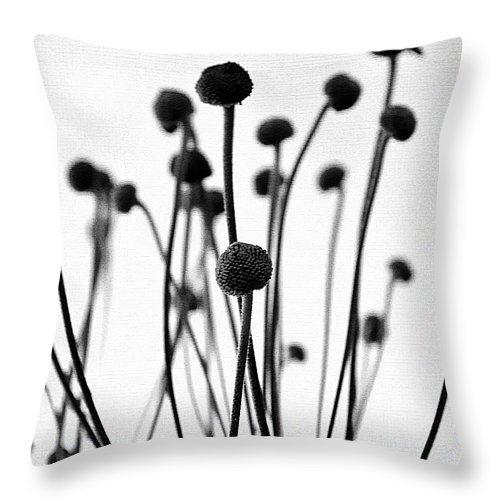 Plants   #pillow #pillows #prettypillow #fashionpillow #designpillow #trendypillow #throwpillows