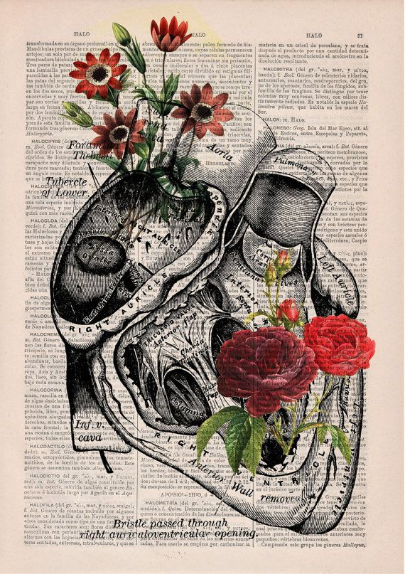 Flowery Heart human Anatomy Print on dictionary page -Love gift - Anatomy art, love wall art, human anatomy, science & anatomy art