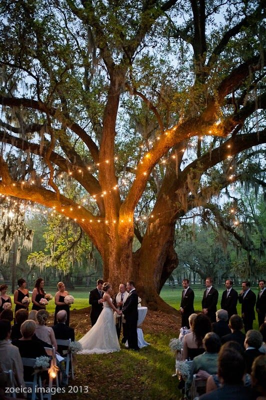 Best 25 Something old ideas on Pinterest  For you blue Wedding save the date pictures and