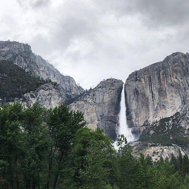 Malgré les nuages et la pluie le spectacle reste magnifique 🗻 Et puis maintenant j'ai ma propre photo pour mon fond d'écran Mac ! 💻 j'essaie de publier mes snaps mais la connexion est mauvaise ce soir, il y a une petite surprise à la fin 😁🐻 Belle journée !! Cindy #yosemite #roadtripcalifornie #california #iphone7plus