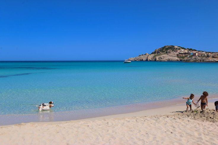 Pin von finca-ferienhaus.de Ferienhäuser und Fincas auf Mallorca