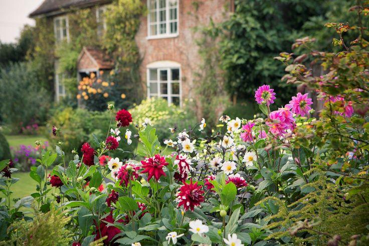 Oltre 25 fantastiche idee su giardini di cottage su for Famose planimetrie delle case