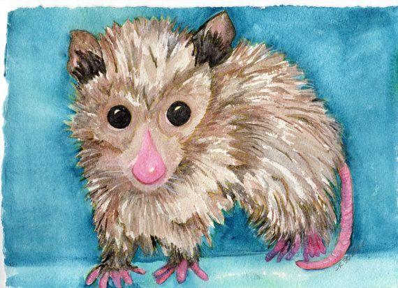 Possum Painting Watercolor Painting Opossum Art by SharonFosterArt, $50.00