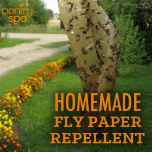 DIY Flypaper & Homemade Fly Repellent Recipes